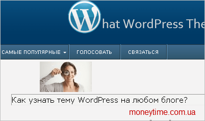 ----WordPress